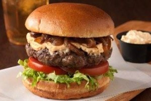 hudsonville-grille-food-photo2