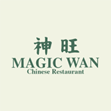 magic-wan-logo